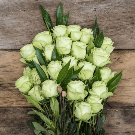 green rose color meaning